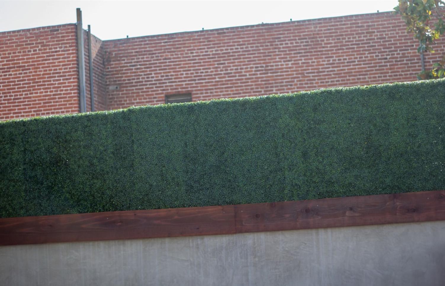Custom Hedge Wall